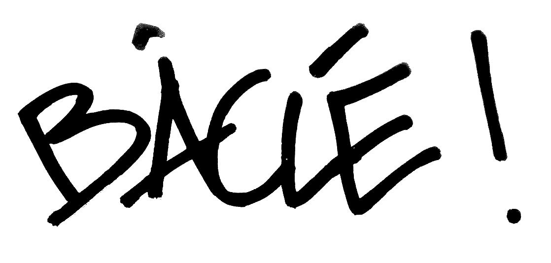 logo BÂCLÉ